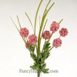 Eva Allium Gigantium Bush single stem