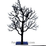 Black Twig Tree