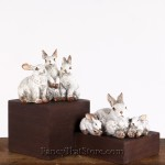 Rabbit Families Set of 2