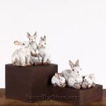 Rabbit Families Set of 2