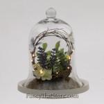 Bird Nest in a Bell Jar