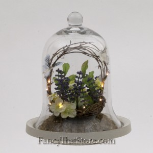 Bird Nest in a Bell Jar