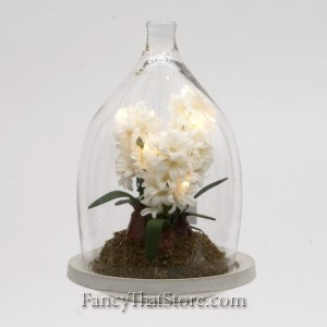 White Hyacinth in a Bell Jar