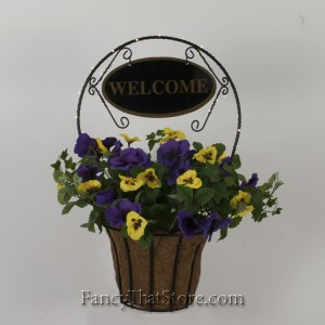 Pansy Welcome Planter