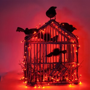 Cajun Crows Birdcage